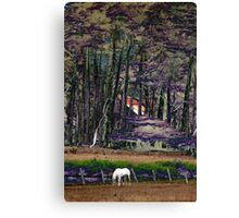 Magical Fairy Forest Canvas Print