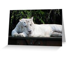 White tiger, Dreamworld Greeting Card