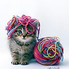 Yarn Hat by Michael Wahlers