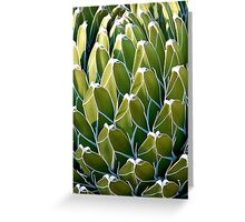Green Cactus Greeting Card