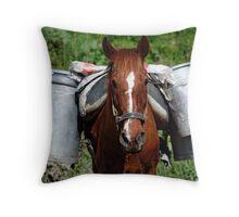 Work horse Throw Pillow