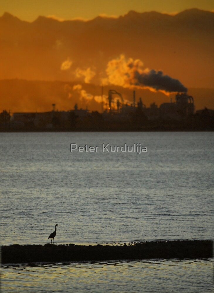 The Sun Is Setting On Civilization by Peter Kurdulija
