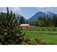 Red Barn in the Pasture Photographic Print