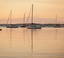 Sunrise Sailboats at Anchor by Joshua McDonough Photography