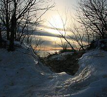 Ludington Sunset by Vicki Oseland