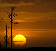 Big Sun Setting by Randall Scholten