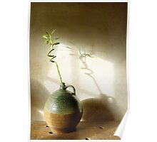 Bamboo in Earthenware Poster