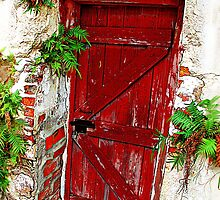 Red Door by Susan Werby