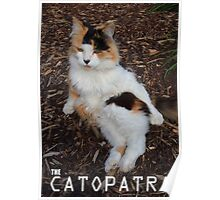The Catopatra (The Cat of Egypt) Poster