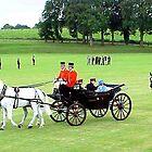 Royal Coach by Braedene