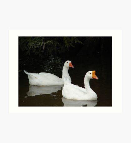 Duck-N-Tux Art Print