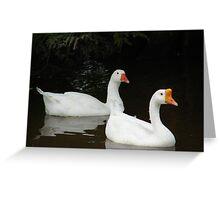 Duck-N-Tux Greeting Card