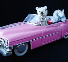Best friends in a Cadillac by Paola Svensson
