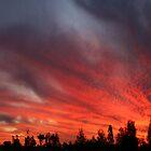 Sunset at Garah by Michael Matthews