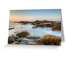 Seascape at Sachuest Point Wildlife Refuge Greeting Card
