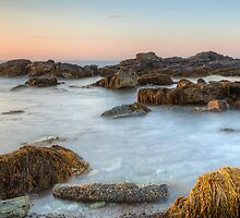 Seascape at Sachuest Point Wildlife Refuge by Joshua McDonough Photography