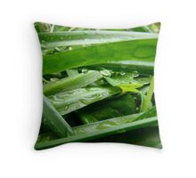 limpid Throw Pillow