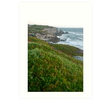 Green Coast Art Print