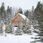 Cabin on Knife River by Shelby  Stalnaker Bortone