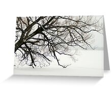 The Leaning Tree Greeting Card