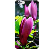 Magnolia Blossoms iPhone Case/Skin