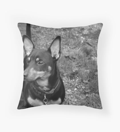 Nobbles Distracted Throw Pillow