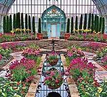 Sunday at the Conservatory by shutterbug2010