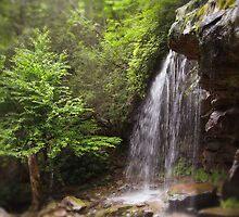 Glen Onoko Falls, Pennsylvania by Richard Lewis