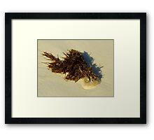 Out Of The Element Framed Print