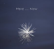 Here... Now by Aimelle