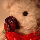 Teddy Loves You!!! by Dmarie Frankulin