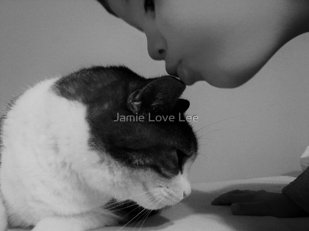 A Kiss for Beavis by Jamie Lee