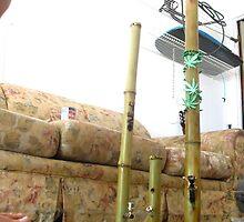 Tall Bamboo Pipes by jamullah