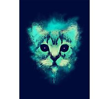 Cosmic Cat Photographic Print