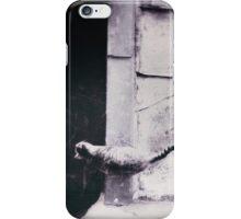 rooftop cat iPhone Case/Skin