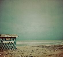 Wintertime and the living is easy by monicamarcov