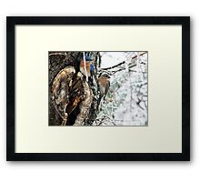 Now Do You Want To Fly South? Framed Print