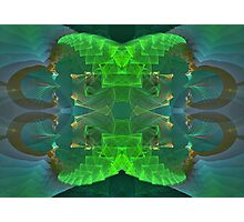 Fractal 28 Photographic Print