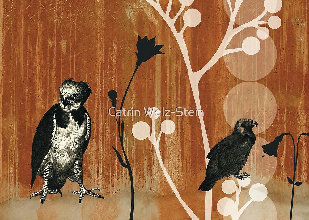 eagle by Catrin Welz-Stein
