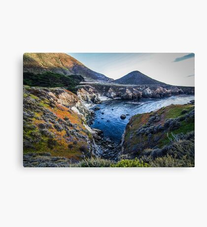 The Great Elemental Forces Canvas Print