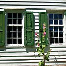 Green Shutters With A History by Jane Neill-Hancock
