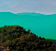 Sea of Mountain Tops by Lisa Taylor