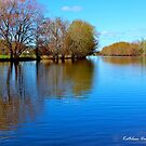Calm on the Flood Waters by Kathleen Daley