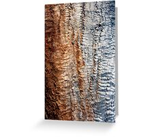 Tree Skin 2 Greeting Card