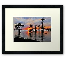 Cypress Silhouettes in St. Martin Parish Framed Print