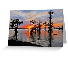 Cypress Silhouettes in St. Martin Parish Greeting Card