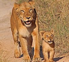 Mom and cub -smile for camera by jozi1