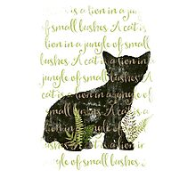 A cat is a lion in a jungle of small bushes Photographic Print