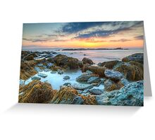 Sunrise at Sachuest Point Wildlife Refuge  Greeting Card