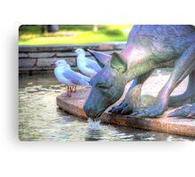 Kangaroos In The City 2 - Perth WA - HDR Metal Print